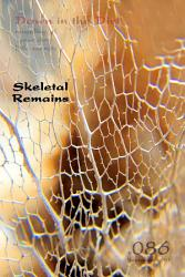 Skeletal Remains Down In The Dirt V086  Book PDF