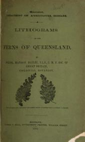 Lithograms of the Ferns of Queensland