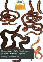 Nemerteans of the Pacific coast of North America [2 parts.]: Part 1