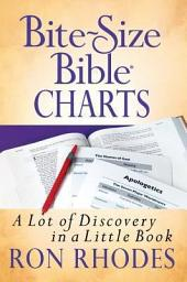 Bite-Size Bible® Charts: A Lot of Discovery in a Little Book