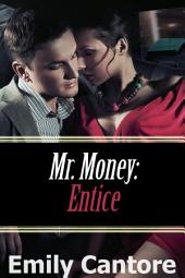 Entice: Mr. Money, Part 5 (A BDSM Erotic Romance)