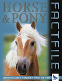 Horse   Pony Factfile PDF