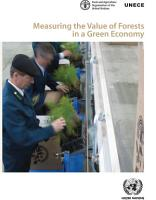 Measuring the Value of Forests in a Green Economy PDF
