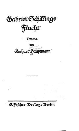 Gabriel Schillings Flucht PDF
