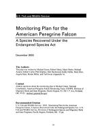 Monitoring Plan for the American Peregrine Falcon PDF