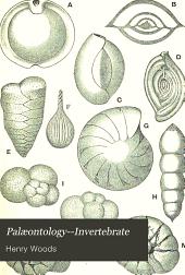 Palæontology--Invertebrate