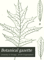 Botanical Gazette: Volume 43