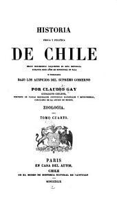 Historia fisica y politica de Chile segun documentos adquiridos en esta republica durante doce años de residencia en ella y publicada bajo los auspicios del supremo gobierno: Volumen 4