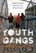 Youth Gangs in American Society PDF