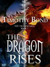 The Dragon Rises: An Epic Fantasy
