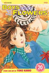 Boys Over Flowers: Volume 20