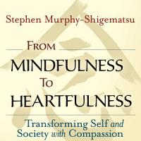 From Mindfulness to Heartfulness PDF