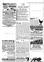 American Poultry Journal PDF