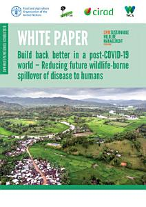 White paper  Build back better in a post COVID 19 world     Reducing future wildlife borne spillover of disease to humans PDF