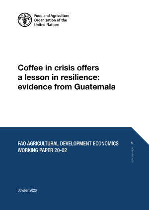 Coffee in crisis offers a lesson in resilience  evidence from Guatemala