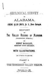 Report on the Valley Regions of Alabama: (Paleozoic Strata)