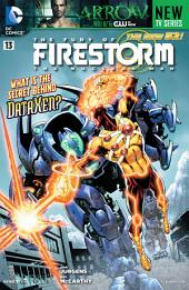 The Fury of Firestorm: The Nuclear Man (2011-) #13