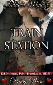 "Train Station: Book 5 of ""Outdoor Menage"""