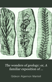 The wonders of geology; or, A familiar exposition of geological phenomena; the substance of a course of lects., from notes taken by G.F. Richardson