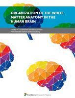 Organization of the White Matter Anatomy in the Human Brain PDF