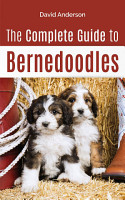 The Complete Guide to Bernedoodles PDF