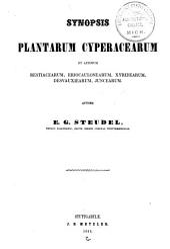 Synopsis plantarum Glumacearum: Volume 2