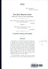 New York Supreme Court Appellate Division
