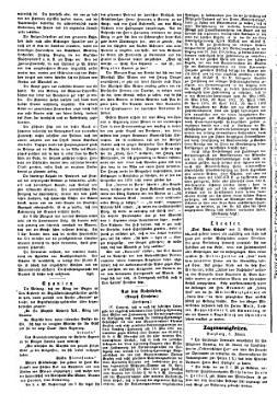 Salzburger Zeitung 1807   1918 PDF
