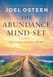 The Abundance Mind Set Book