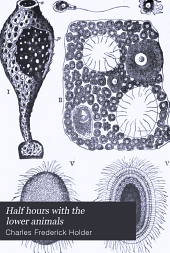 Half Hours with the Lower Animals: Protozoans, Sponges, Corals, Shells, Insects, and Crustaceans