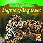 Jaguars / Jaguares