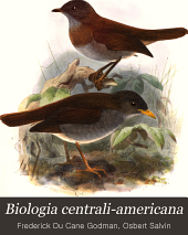 Biologia centrali-americana: Aves, Volumen 4