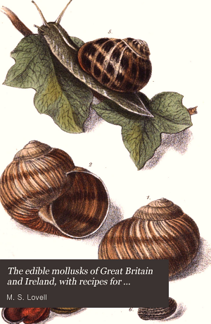 The Edible Mollusks of Great Britain and Ireland