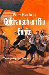 Goldrausch am Rio Bonito: Cassiopeiapress Western