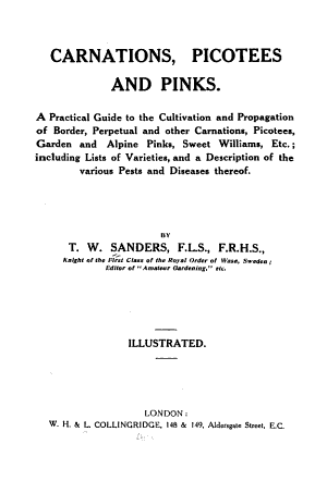 Carnations Picotees And Pinks