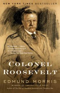 Colonel Roosevelt Book