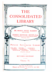 The Consolidated Library PDF