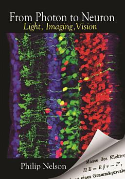 From Photon to Neuron PDF