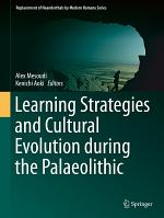 Learning Strategies and Cultural Evolution during the Palaeolithic