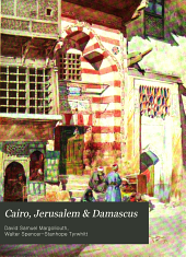 Cairo, Jerusalem, and Damascus: Three Chief Cities of the Egyptian Sultans