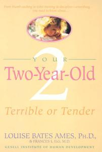Your Two Year Old Book