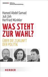 Was steht zur Wahl?: Über die Zukunft der Politik
