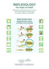4 - Lumbago and ischialgia: Reflexology supplementary charts