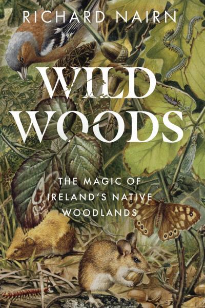 Download Wildwoods Book