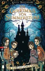 Das Geheimnis von Summerstone   Die furchtlosen Vier PDF