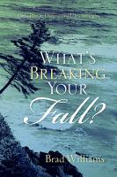 What s Breaking Your Fall  PDF