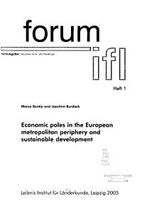 Economic Poles in the European Metropolitan Periphery and Sustainable Development PDF