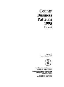 County Business Patterns