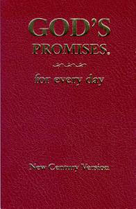 God s Promises for Every Day Book