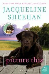 Picture This: A Novel